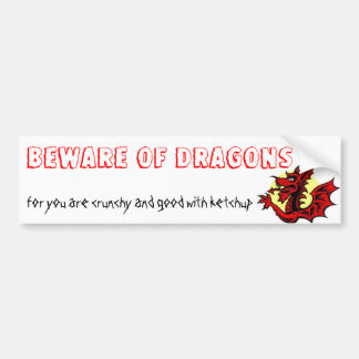 BEWARE OF DRAGONS BUMPER STICKERS