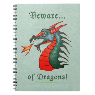 Beware of Dragons Painting Notebook