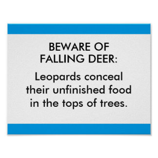 Beware of falling deer: Leopards conceal their unf Poster