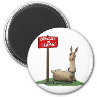 Beware of LLama! Magnet