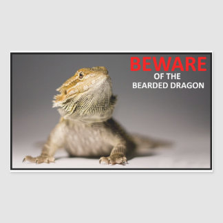 BEWARE of the bearded dragon Rectangular Sticker