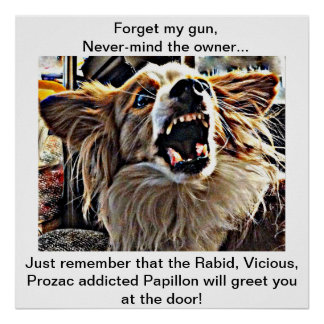 Beware Prozac Addicted Dog will Meet you at Door Poster