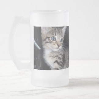 Beware_The_Kitten,_Frosted_Big_Beer_Mug. Frosted Glass Beer Mug