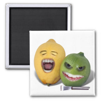 Beware the Lemon Zester 2 Inch Square Magnet