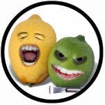 Beware the Lemon Zester Photo Sculpture