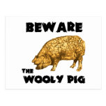 Beware the Wooly Pig Post Card