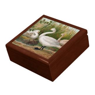 """Bewick Swan"" Jewelry Box"