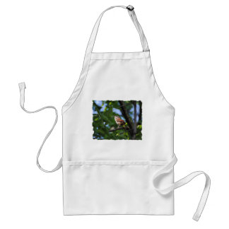 Bewick's Wren Backyard Bird Adult Apron