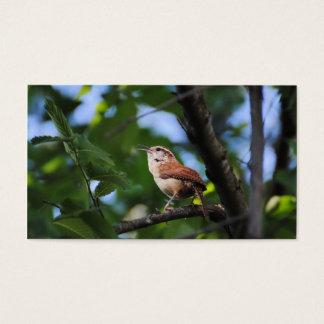 Bewick's Wren Backyard Bird Business Card