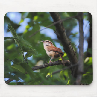 Bewick's Wren Backyard Bird Mouse Pad