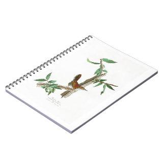 Bewick's Wren John James Audubon Birds of America Notebook