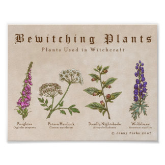 Bewitching Plants Print