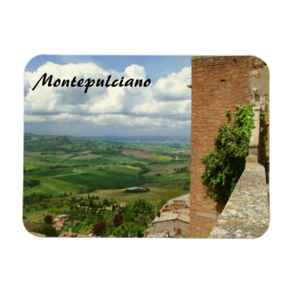 Beyond the Rooftops 2 Rectangular Photo Magnet