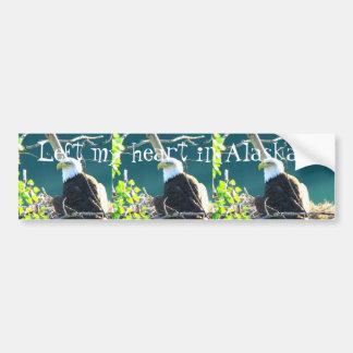 BEYR Bald Eagle Yukon River Bumper Sticker