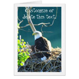 BEYR Bald Eagle Yukon River Card