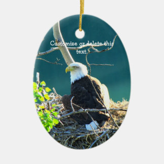 BEYR Bald Eagle Yukon River Double-Sided Oval Ceramic Christmas Ornament