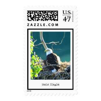 BEYR Bald Eagle Yukon River Postage Stamp
