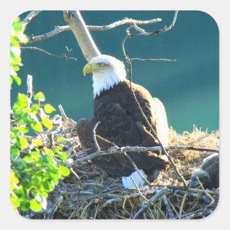 BEYR Bald Eagle Yukon River Square Sticker