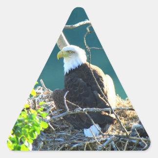 BEYR Bald Eagle Yukon River Triangle Sticker