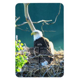 BEYR Eagle calvo el río Yukón Imán Flexible