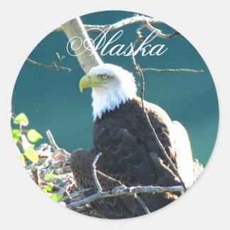 BEYR Eagle calvo el río Yukón Pegatina Redonda