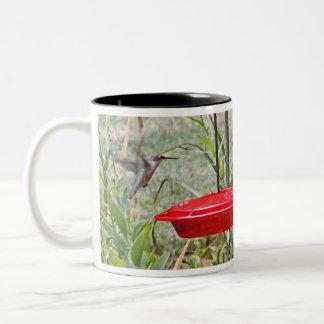 BF- Hummingbirds in Flight Mugs