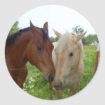 BFF Best Friends Forever - Horses Classic Round Sticker