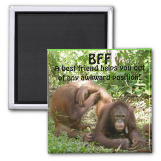 BFF Best Friends Forever Magnet