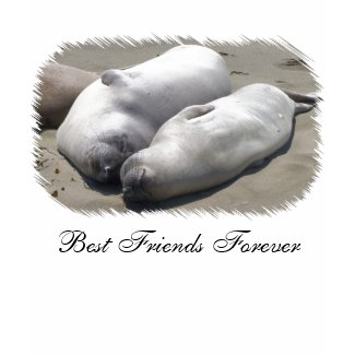 BFF- Best Friends Forever shirt