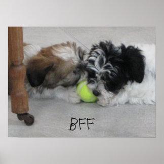 BFF Best Friends Puppy Poster