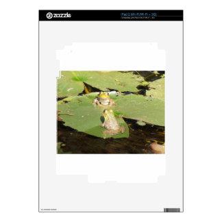 BFF CALCOMANÍA PARA EL iPad 2