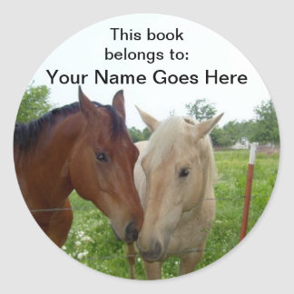 BFF Horses Book Labels Classic Round Sticker
