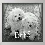 BFFS Cute Dogs Poster Print