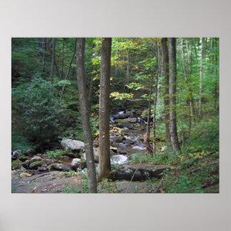 BG- Back to Nature Stream Print