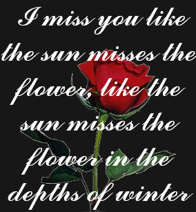 bgsingle_red_rose i miss you like the sun mis t shirt