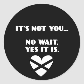 BH: It's Not You... No Wait, Yes it Is Classic Round Sticker