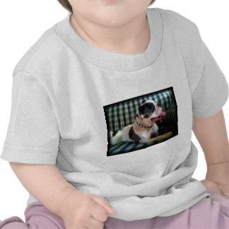 BHB s Dixie Miracle Tee Shirts
