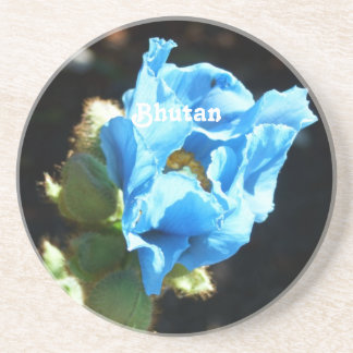 Bhutan Blue Poppy Beverage Coasters