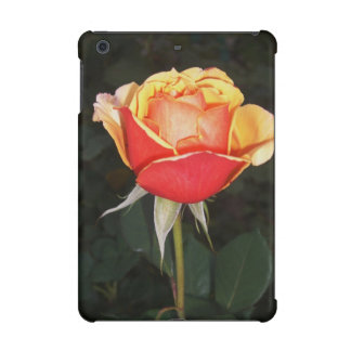Bi-Color Orange Rose iPad Mini Covers