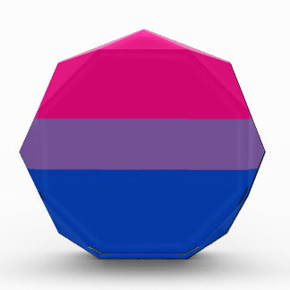 Bi Flag Flies For Bisexual Pride Award