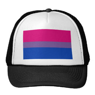 Bi Flag Flies For Bisexual Pride Trucker Hat