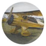 Bi Plane Party Plates