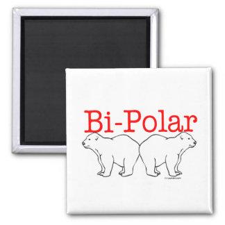 Bi-Polar 2 Inch Square Magnet