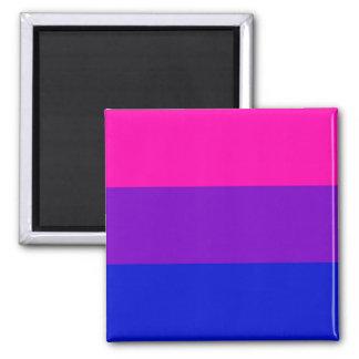 Bi pride flag magnet