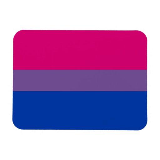 Bi Pride Flag Magnet (Premium)