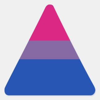 Bi Pride Flag Sticker Sheets (Triangle)
