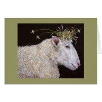 Bianca the sheep card