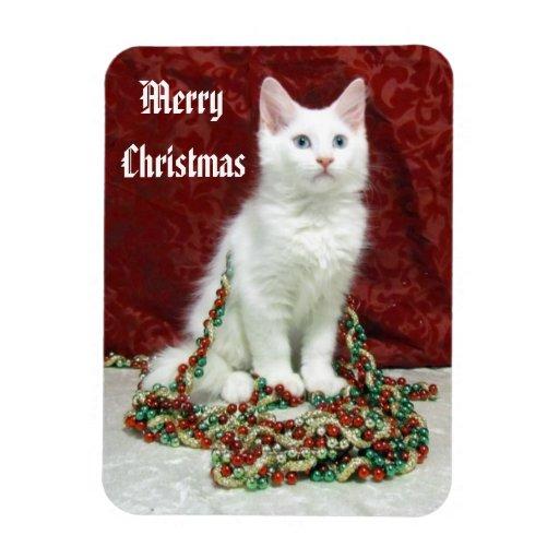 Bianca's Christmas Magnet ( Kitten Cat Rescue)