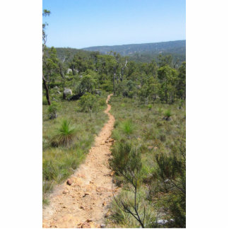 Bibbulmun Track In The Forest Near Kalamunda Acrylic Cut Outs