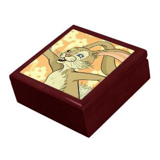 Bibi Bunny Keepsake Boxes
